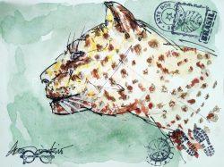 """""""Onça-pintada, Jaguar"""", por Lauro Monteiro Filho"""