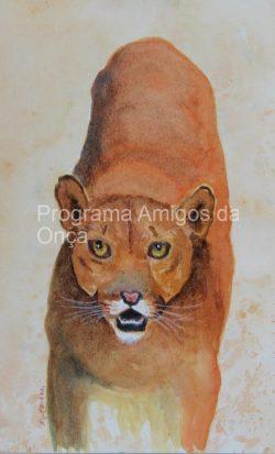 """Puma"", por Joyce Hartmann"