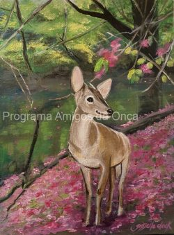 """"""" Brown Brocket Deer"""", por Grisselle Chock"""