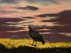 """Urubu Rei / King Vulture"", por Rosana Venturini"