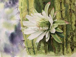 """""""Mandacaru cactus"""", por Christina Hopkinson"""