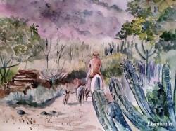 """Community of the Caatinga"", por Inge Eisenhauer"